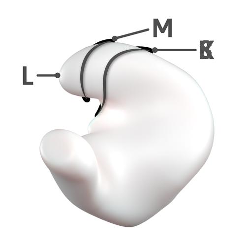 Cymba length