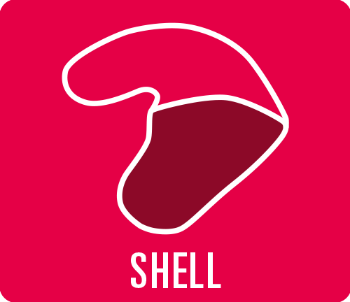 Earmould construction type shell